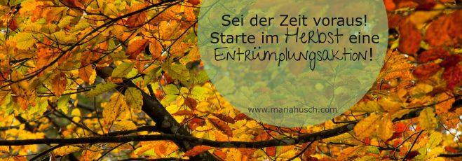 Sei der Zeit voraus! Starte im Herbst eine Entrümplungsaktion und schaffe Freiraum für die Veränderung, die du dir wirklich wünschst.